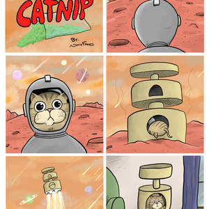 Adventures_on_Catnip_-_Space_Adventure.jpg