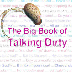 117_Book_of_Talking_Dirty.jpg