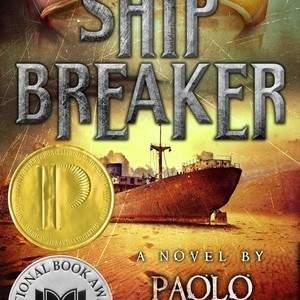shipbreaker.jpg