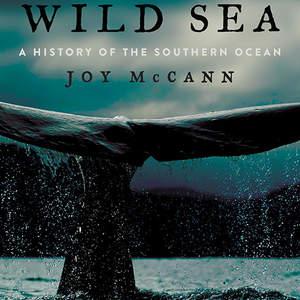 wild-sea.jpg