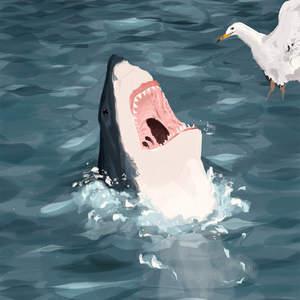 shark-by-felix-diaz-illustration_2.jpg