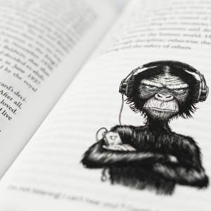 Monkey-photo.jpg