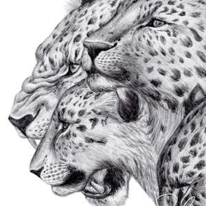 Inktober_2018_Amur_Leopard--Shawn_E_Russell.jpg