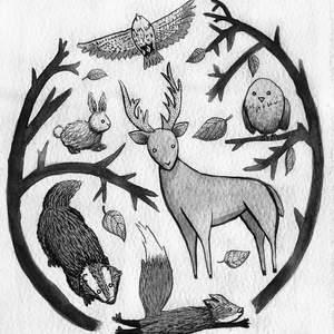 Narnia1.jpg