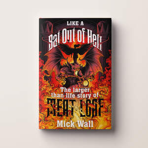 bat_out_of_hell_hb.jpg