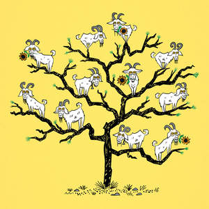 goat_tree-01.jpg