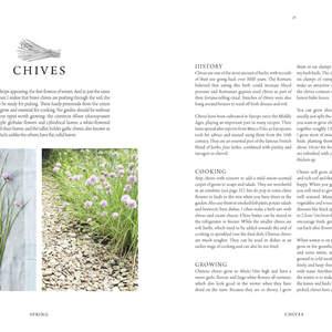 016-079_Herbs_Spring_Page_07.jpg