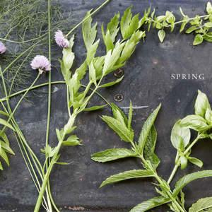 016-079_Herbs_Spring_Page_01.jpg