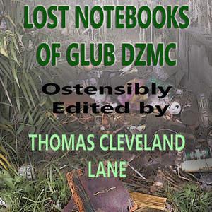 LostNotebooks8.jpg
