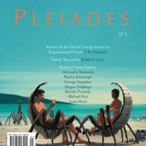 Pleiades_4.jpg