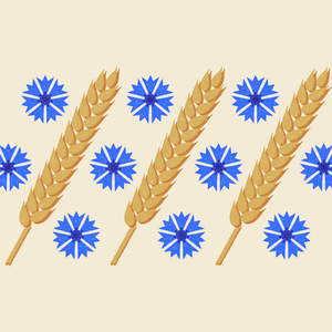 cornflower_pattern.jpg
