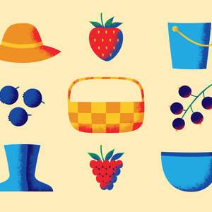 u-pick_berry_farm.jpg