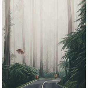 MistyForestRoad_WEB.jpg