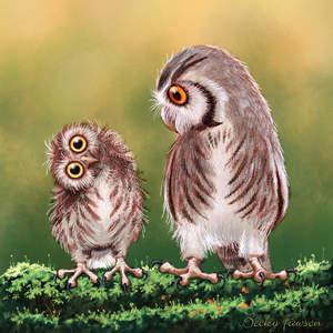 Owl_BeckyFawson.jpg