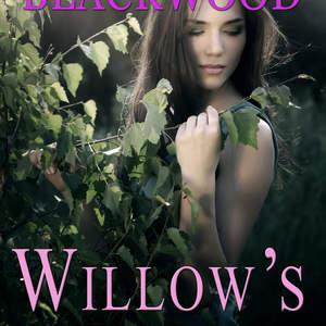 WillowsWalCoverFinalEbookJPG.jpg