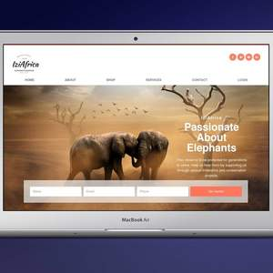 IziAfrica-Website-Design-1.jpg
