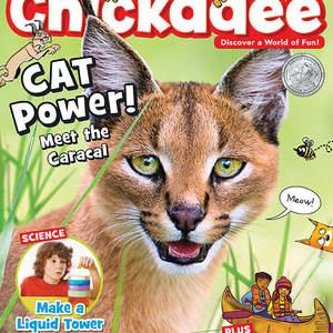 chickadee_magazine_may_2019_cover_screenRGB.jpg