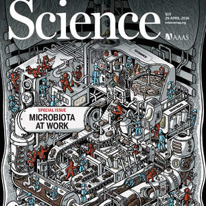 NSussman_ScienceMag_042916cover-lowres.jpg