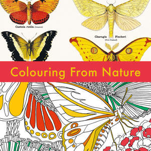 Deyrolle_Colouring_from_Nature_Cover_1_1340_c.jpg