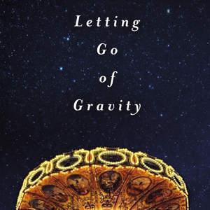 LettingGoofGravity_Take2_Rd1_2.jpg