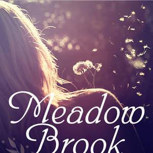 Meadow_Brook.jpg