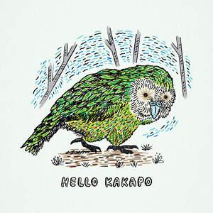 hello_kakapo-01.jpg