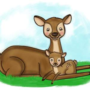 Doe-and-Fawn.png
