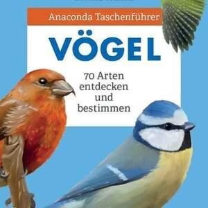 Vogelführer.jpg