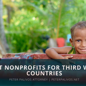 Nonprofits Combating Poverty In Third World Countries