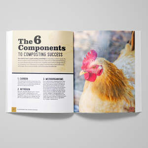 Book-Mockup---Free-Version-2.jpg