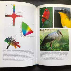 Bird_Coloration_plates.jpg